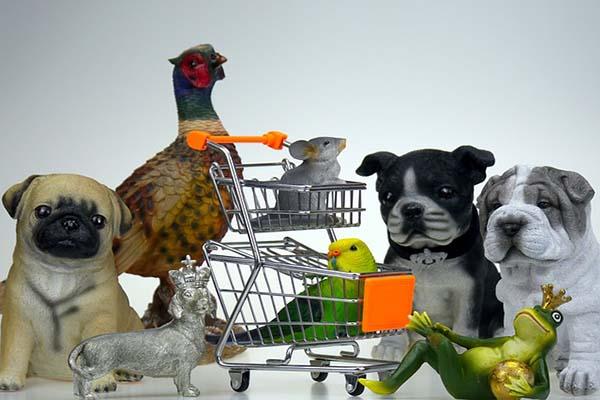 Photo of Cara Memulai Bisnis Pet Shop Yang Menjanjikan