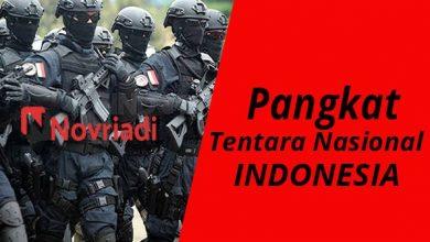 Photo of Daftar Tingkat Posisi Pangkat TNI Indonesia