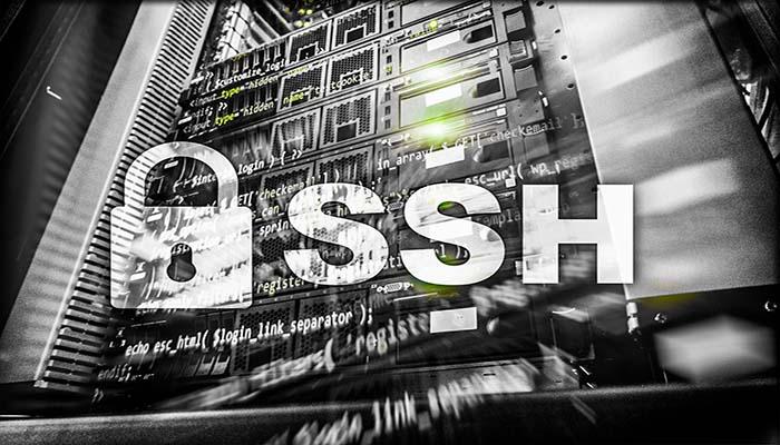Apa Itu Pengertian SSH : Manfaat, Fungsi, dan Cara Kerja