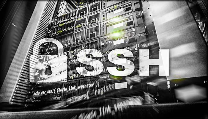 Fungsi SSH