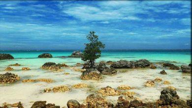 Photo of √ 17 Destinasi Wisata Pulau Nias yang Eksotis