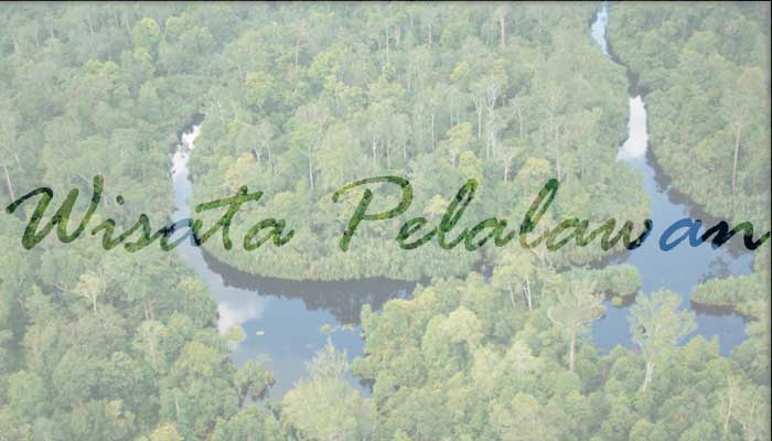 √ 9 Destinasi Wisata di Pelalawan Riau yang Wajib Dikunjungi