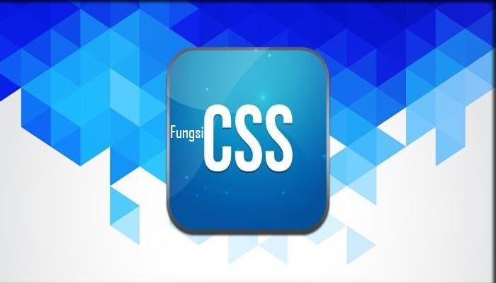 Fungsi CSS