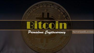 Photo of Bitcoin Primadona Cryptocurrency di Kalangan Investor