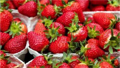 Photo of Manfaat Strawberry Untuk Kesehatan Jantung