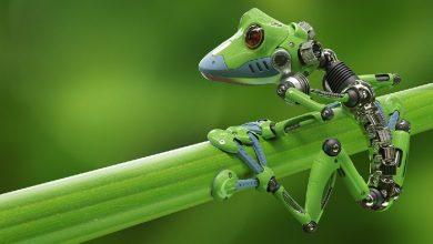 Photo of 5 Robot Terbesar Di Dunia, Unik Dan Canggih!