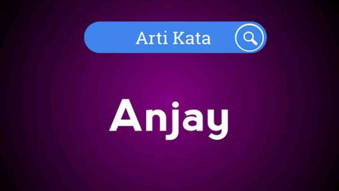 arti kata anjay
