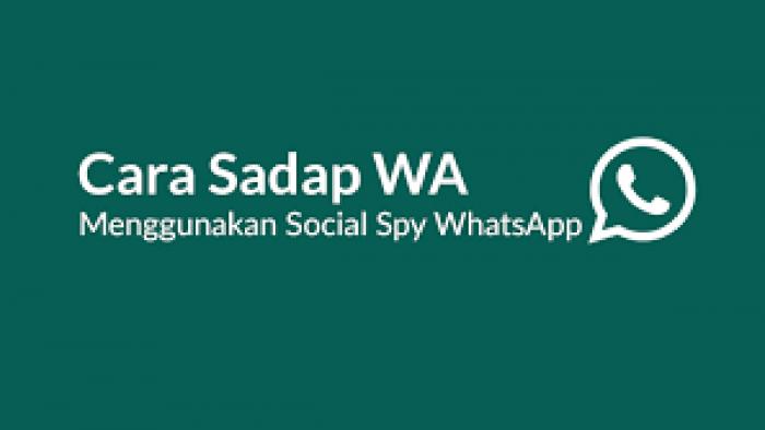 Spy SMS Whatsapp